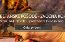ZVOKI TIBETANSKIH POSOD, VODENA SPROSTITEV, 14.4. (petek), 20h