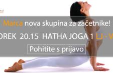 NOVA SKUPINA ZA ZAČETNIKE: LJ VIČ TOREK 2015